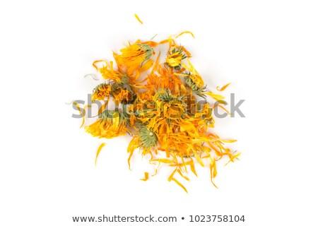 Marigold dry tea flowers Stock photo © FOKA