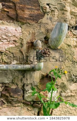 old rusty valve in the grass Stock photo © ultrapro