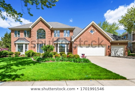 House on lawn Stock photo © ylivdesign