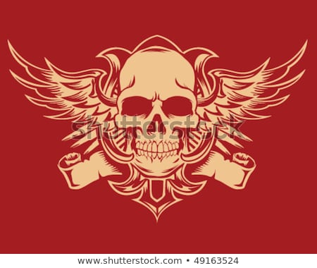 skull and wings in grunge style stock photo © tracer