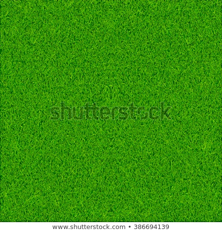 Ekolojik yeşil ot doku model golf doğa Stok fotoğraf © jordanrusev