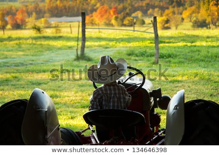 çiftlik erkek traktör binicilik turuncu yaz Stok fotoğraf © ivonnewierink