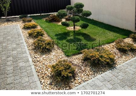 stone garden stock photo © brebca