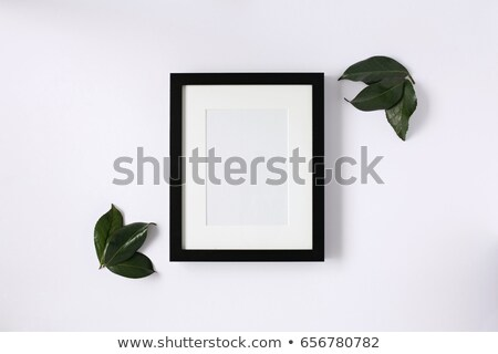 matte frame Stock photo © clearviewstock