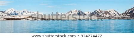Geleira acima mar montanhas atrás ártico Foto stock © dinozzaver