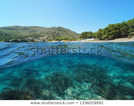 Espanha · ver · pacífico · caverna · azul - foto stock © nito