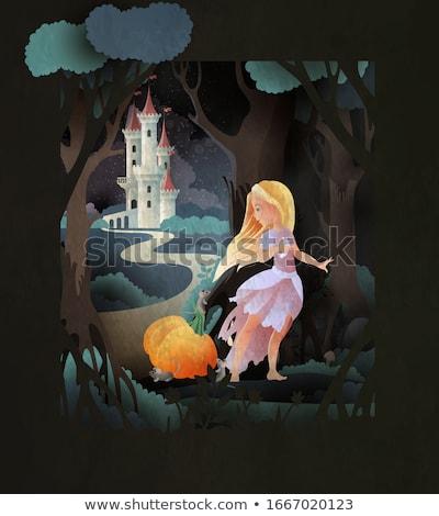 prinses · magie · schoen · vector - stockfoto © NicoletaIonescu