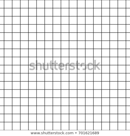 Gráfico sin costura milímetro red papel vector Foto stock © ESSL