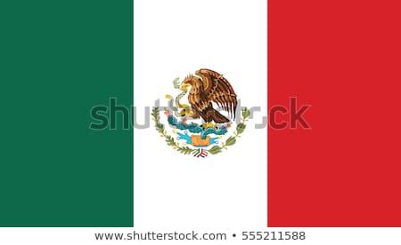 Ikon zászló Mexikó embléma izolált fehér Stock fotó © Oakozhan
