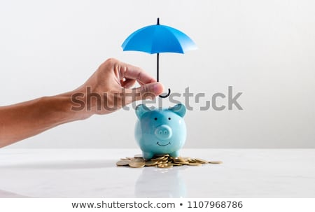 Investing during Autumn Stock photo © Lightsource
