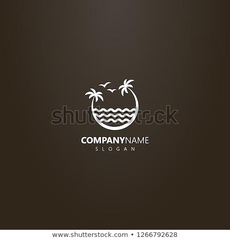 Palmeira dois gaivotas onda preto e branco desenho Foto stock © orensila