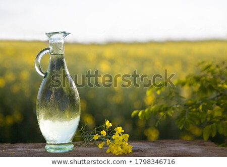 Jug of vegetable oil in field of oilseed Stock photo © IS2