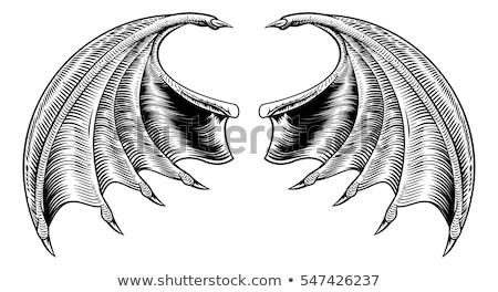 sárkány · gravírozott · stílus · fekete · kínai · fekete-fehér - stock fotó © krisdog