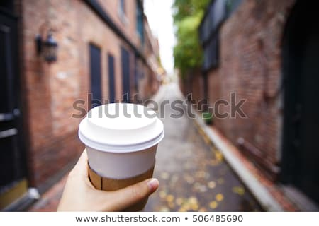 Boston · kávé · fiatal · hölgy · tejszínhab · fej - stock fotó © fisher