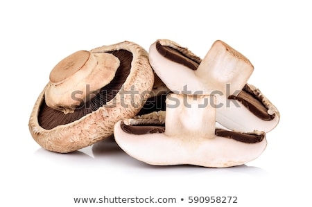 Raw Portobello Mushrooms Stock Photo C Khumthong 8972383 Stockfresh