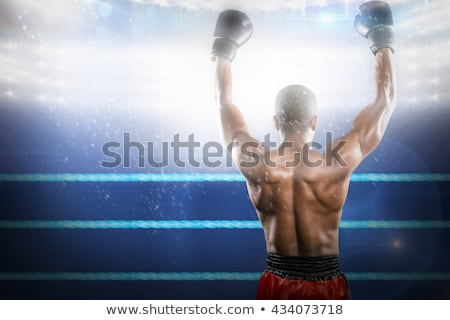 Boksör poz zafer heyecanlı boks halka Stok fotoğraf © wavebreak_media