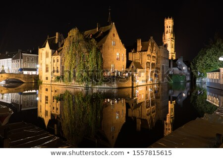 Belfry of Bruges at night Stock photo © benkrut