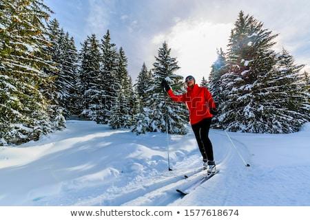 krzyż · kraju · narciarskie - zdjęcia stock © pancaketom