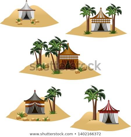 Cartoon · naturaleza · paisaje · desierto · aislado · blanco - foto stock © bluering