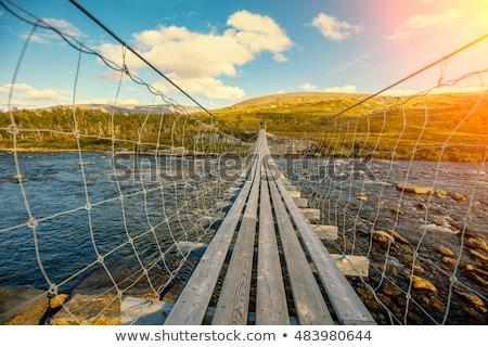 suspension bridge over the mountain river norway stock photo © cookelma