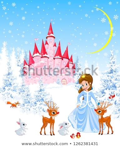 розовый · небе · замок · иллюстрация · сказка · Принцесса - Сток-фото © liolle