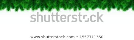 Bianco vuota frame verde Natale Foto d'archivio © limbi007