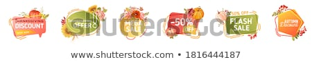 set of mega sale autumn fall price advertisings stock photo © robuart