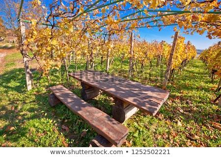 Pad idilli ősz színes hegy nyom Stock fotó © xbrchx