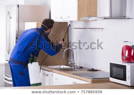 Worker Spraying Insecticide Chemical At Kitchen Stock photo © AndreyPopov