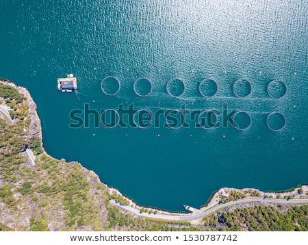 boerderij · zalm · vissen · Noorwegen · antenne · fotografie - stockfoto © cookelma