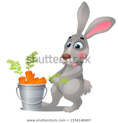Animated grey hare and steel bucket filled with ripe carrots isolated on white background. Vector ca Stock photo © Lady-Luck