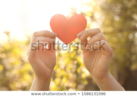 woman hands holding red heart toy stock photo © karandaev