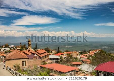 Miasta Gruzja widoku miasta krajobraz górskich Zdjęcia stock © boggy