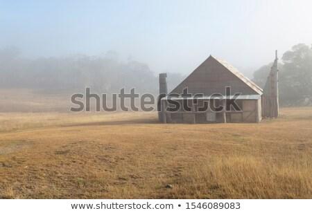 ev · üst · mavi · gökyüzü · ev · pencere · yaz - stok fotoğraf © lovleah
