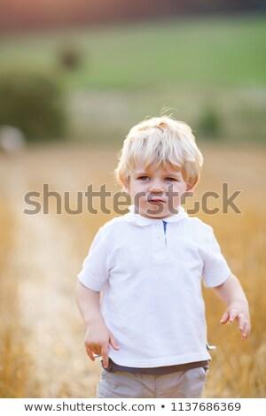 Adorable pequeño nino ejecutando maíz campo Foto stock © konradbak