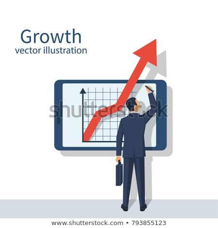 Inkomen groei vector metafoor winstgevend business Stockfoto © RAStudio