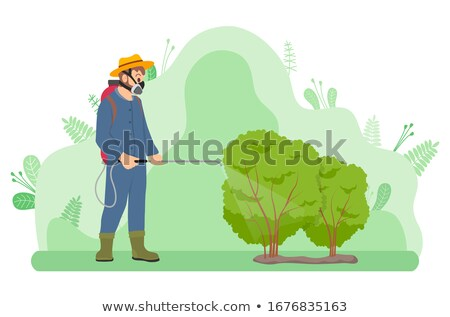 Gardener Fertilizes or Treats Bushes from Insects Stock photo © robuart