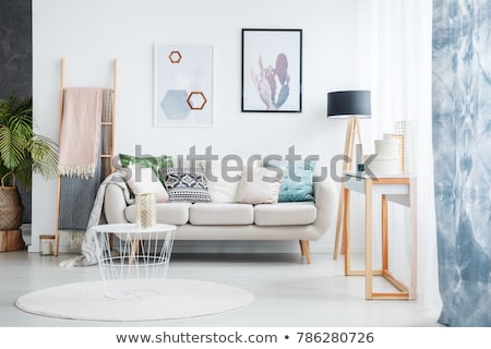 Sofa and Cushions, Plant and Lamp Interior Design Stock photo © robuart
