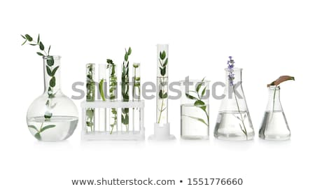 Test verrerie science laboratoire technologie Photo stock © yupiramos