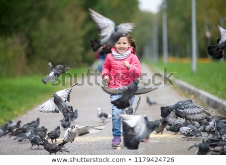 little girl chasing pigeons Stock photo © phbcz