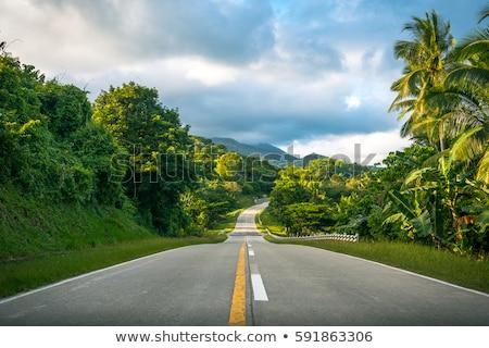 estrada · Havaí · placa · sinalizadora · parque · assinar · gado - foto stock © eyeidea