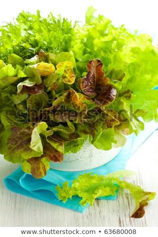 Groene sla salade textuur voedsel blad Stockfoto © TheProphet