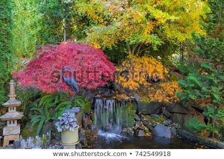 japonês · jardim · areia · árvores · viajar · arquitetura - foto stock © davidgn