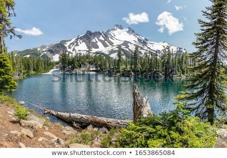 Ver montanha alcance Oregon natureza Foto stock © cboswell