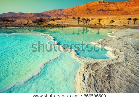 Dead Sea landscape on a  day Stock photo © OleksandrO