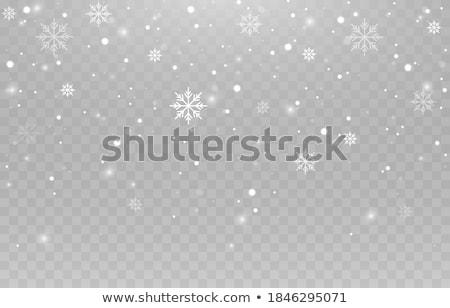 Tél hópehely minta fény háttér felirat Stock fotó © creative_stock