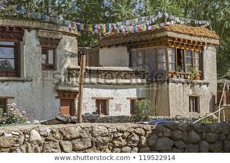 tipik · yerleşim · evleri · Hindistan · ev · ev - stok fotoğraf © haraldmuc