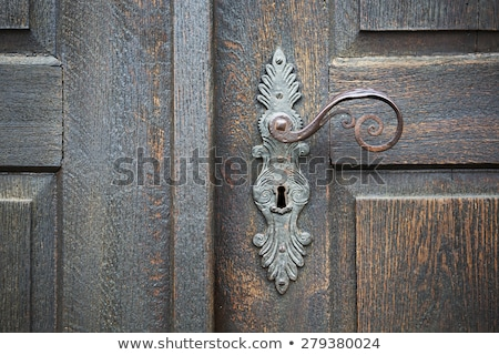 Ancient door handle on old door Stock photo © Taigi