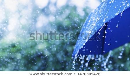 Precipitazioni tre enorme gocce tempesta nero Foto d'archivio © ultrapro