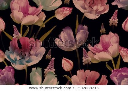 Tulipe modèle décoratif résumé fond vert Photo stock © bartmart